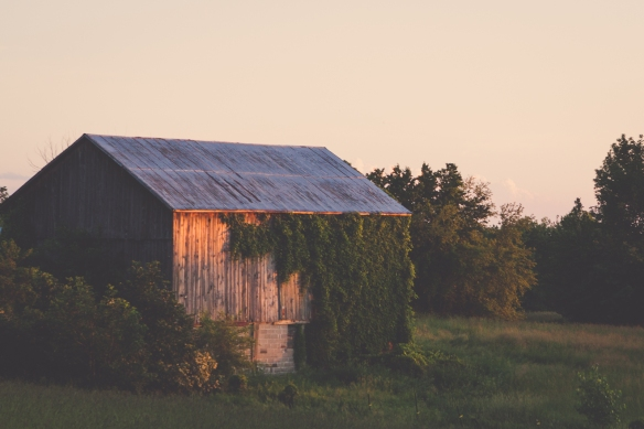 barn light.